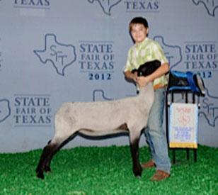 Massey Show Lamb Amp Goat Camps Successes
